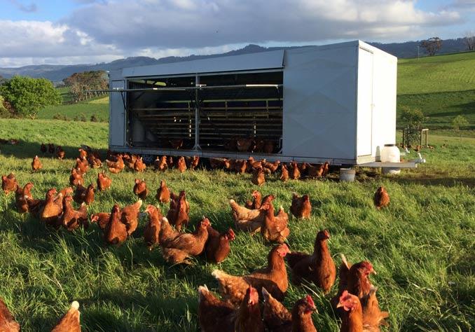 Bonnie View Farm