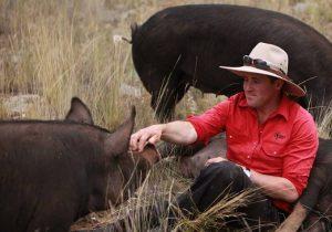 extraordinary pork